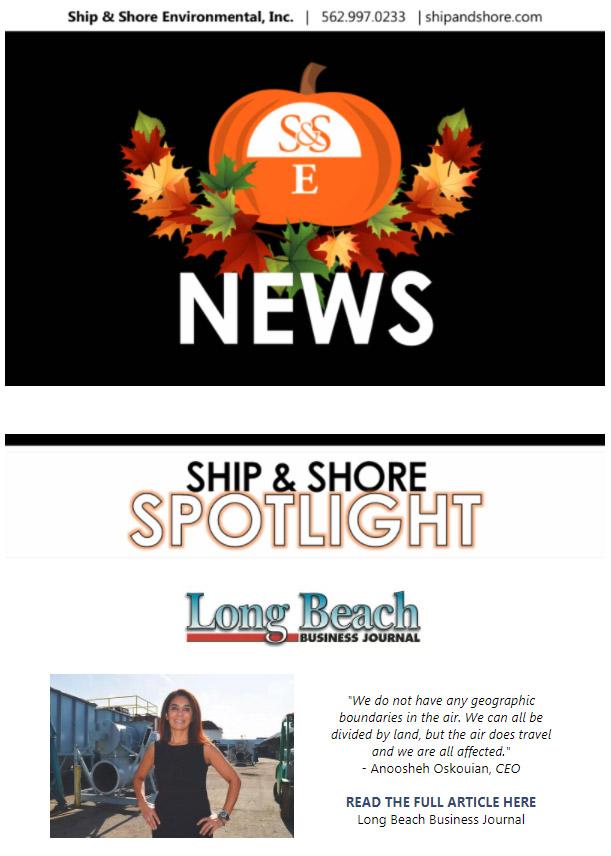 SSE Newsletter November 17